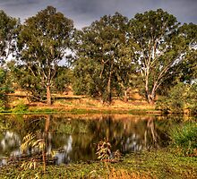 Wonga Magic - Wonga Wetlands, Albury NSW - The HDR Experience by Philip Johnson