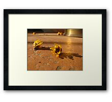 Signs of Spring in Rural Italy Framed Print