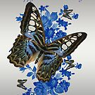 Mother's Day Card With Butterflies by Moonlake
