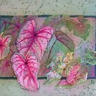 Caladiums 6 by Deborah Younglao