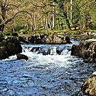 River Llugwy. North Wales by Graham Southall
