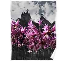 Church Flowers Poster