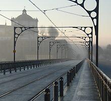 The Gustav Eiffel Bridge In Porto  by LorducterSnooty