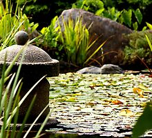 Japanese Garden - South Tce, Adelaide by Nathan Lam