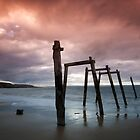 Cat Bay - Phillip Island by Timo Balk