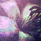 Lily Impressionism. by Vitta
