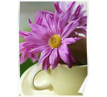 Happiness~~~ is a Cup Full of Daisies Poster