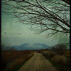 dirt road by Virag Anna Margittai