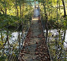 Swinging Bridge~ by virginian