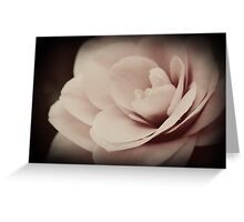 Sweet and Lovely Greeting Card