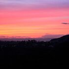 Hollywood Sunset from Griffith Park, Los Angeles, California by Christina Macaluso Hammock