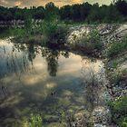 Morning Reflections - Manitoba by Réjean Brandt