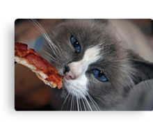"""""""Does Your Kitty Love Pizza Too ?"""" Canvas Print"""