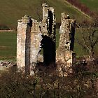 Edlingham Castle Northumberland by Harry Purves