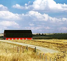 Rural Scene near Olds, Alberta, Canada by Adrian Paul