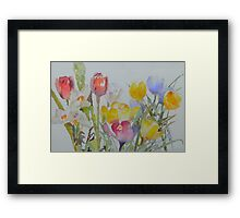 Spring: mixed flowers Framed Print