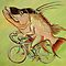 Hogfish on a Bicycle by Ellen Marcus