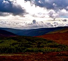 Wicklow Mountains by naddyt