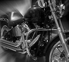 Born to Ride by Daryl Niemczynski