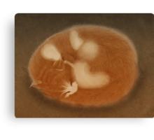 Cat's Dream Canvas Print