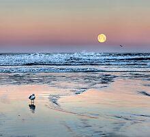 """""""Moonset"""" by Jo Wienert"""
