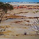 Coorong View by Kay Cunningham
