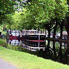 Grand Canal, Dublin by aquinnahimages