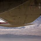 Aircraft wing by Wolf Sverak