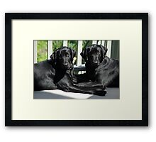 Times Two Framed Print