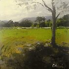 Kenilworth  Queensland Landscape by Chris Hobel