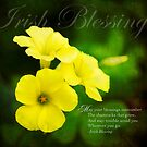 Irish Blessing by Laura Palazzolo