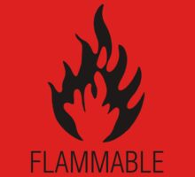 Flammable by Harvey Schiller