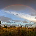 Under The Rainbow by David Haworth