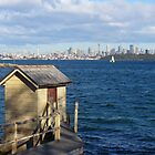 Sydney Harbour Vista by DashTravels