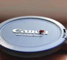 Ladybug on Canon by illadrodifuoco
