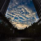 Martin Place Sydney by David Petranker