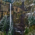 Winter at Multnomah Falls by Bryan D. Spellman