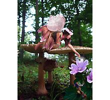 A Fairy's Work is Never Done Photographic Print