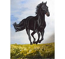 Beautiful Black Horse Painting Photographic Print