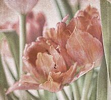 Tapestry by Brenda Boisvert