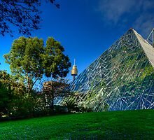 Sydney Botanic Gardens - Pyramid House by Ian English