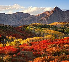 Fall Colors by Janet Fikar
