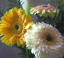 White and Yellow Gerbera and Calla 1 by Christopher Johnson