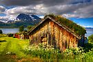 Traditional Houses at Hella, Kvaloy. Tromso, North Norway. by photosecosse /barbara jones