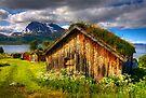 Traditional Houses at Hella, Kvaloy. Tromso, North Norway. by photosecosse /barbara jones