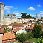 Bourdeilles, Dordogne, France by Liz Garnett