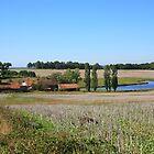 Bregout, Nontron, Dordogne by Liz Garnett