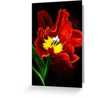 The Red Tulip Greeting Card
