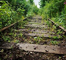 Abandoned tracks by Guy Carpenter