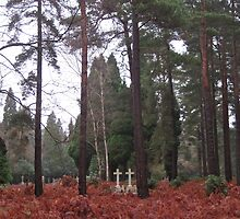 Lost Graves - Brookwood Cemetery by Belle Morss